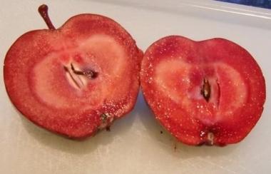 Яблоня красномясая Скарлетт Сюпрайз