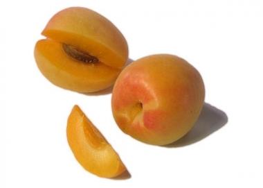 Колоновидный гибрид абрикос-слива Априум