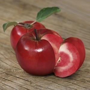 Яблоня красномясая Эра