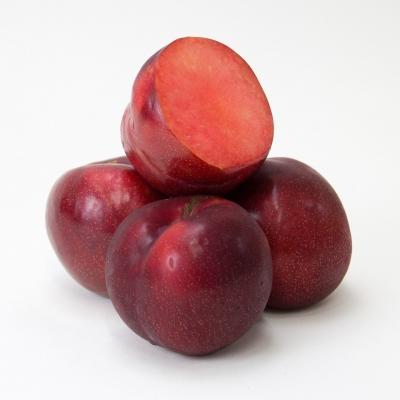 Плумкот (слива-абрикос) Априсали
