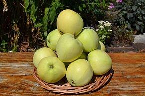 Яблоня Папировка (летнее)