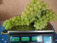 Виноград Слава Украине