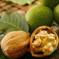 Грецкий орех Топоровский